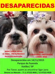 Desaparecidas duas cachorrinhas - Itatiba-SP