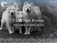 CANIL NEW EVEREST